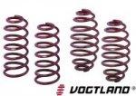 vogtland-sport-springs-ford-fiesta-st-ng_1391156400.jpg